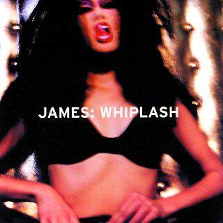 21    James – Whiplash.jpg
