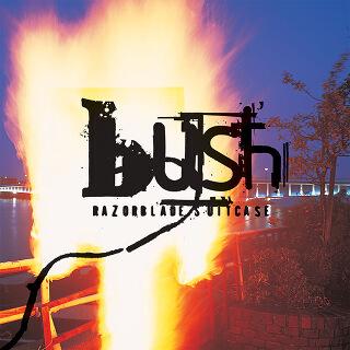 5    Bush – Razorblade Suitcase.jpg
