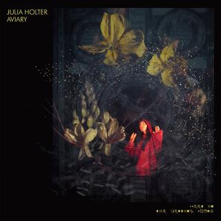 35    Julia Holter - Aviary.jpg