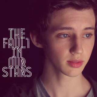 35_The Fault in Our Stars - Single - Troye Sivan_w320.jpg